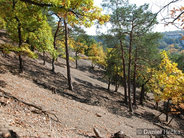 Údolí Kunratického potoka