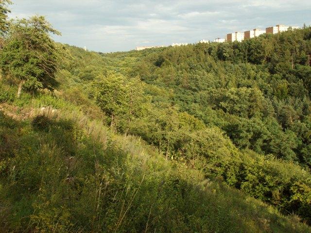 Přírodní památka Bohnické údolí