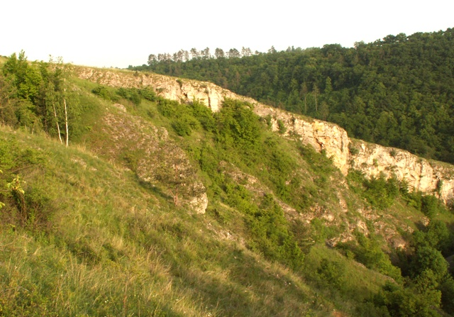Přírodní rezervace Radotínské údolí