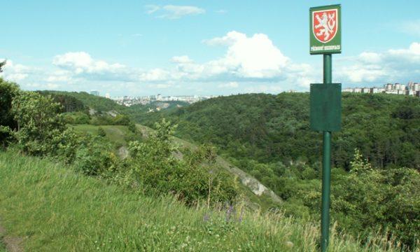 Přírodní rezervace Prokopské údolí, na plošině butovického hradiště