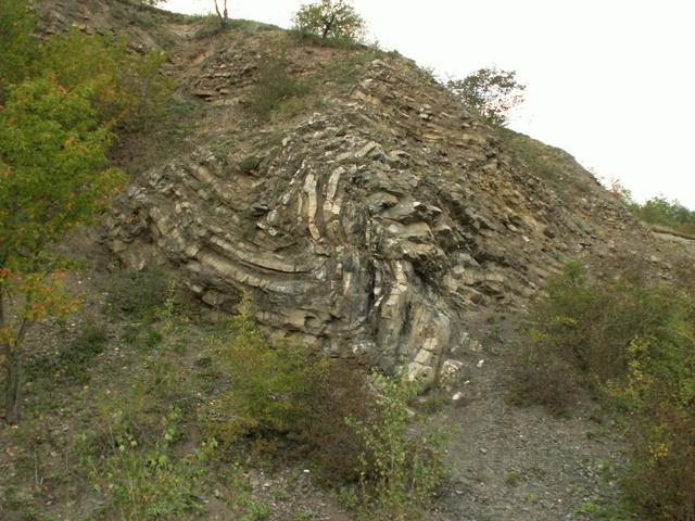 Chuchelské háje, přírodní rezervace
