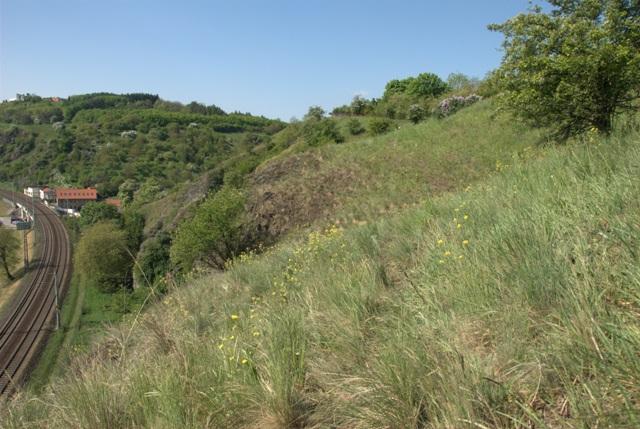 Přírodní památka Podbabské skály
