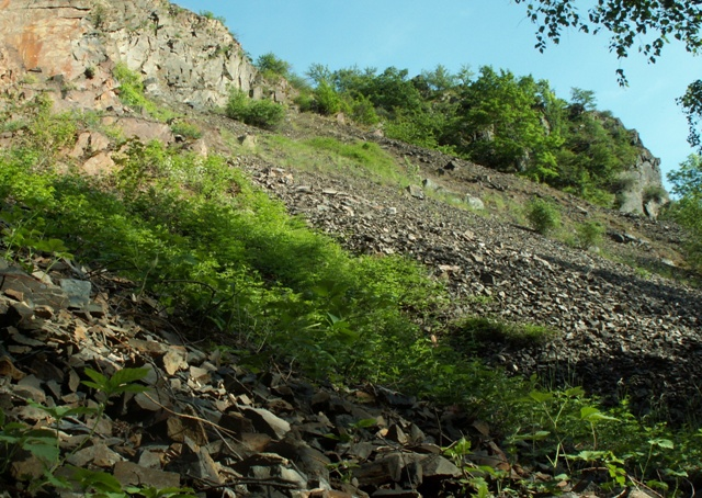 Kaňon Vltavy u Sedlce