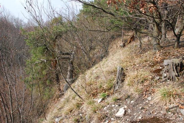 Národní přírodní rezervace Malý a Velký štít