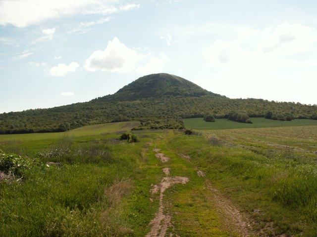 Národní přírodní rezervace Oblík