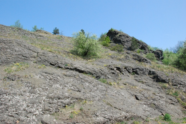 Přírodní rezervace Prokopské údolí