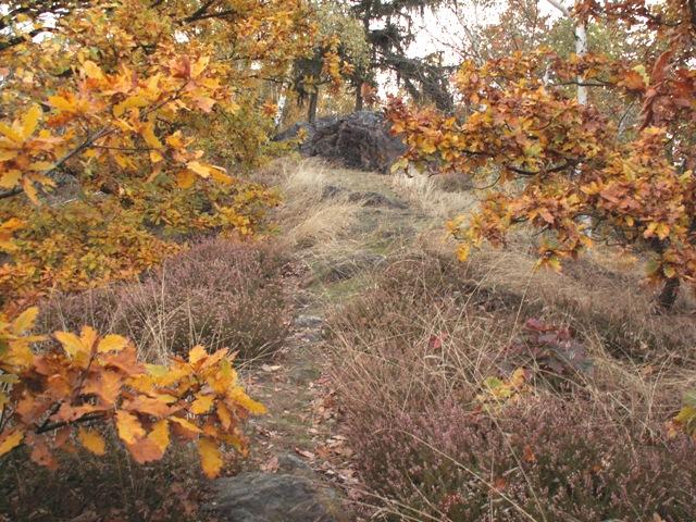 Údolí Únětického potoka
