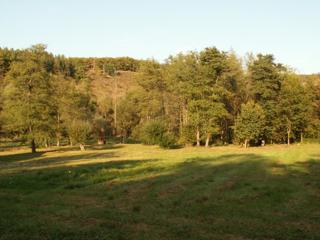 Přírodní rezervace Údolí Únětického potoka