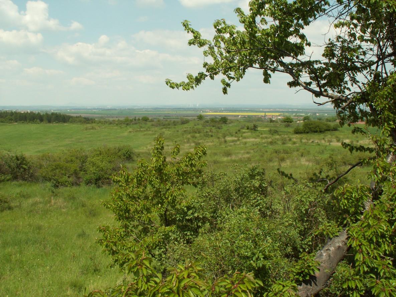 Přírodní rezervace Vršky pod Špičákem