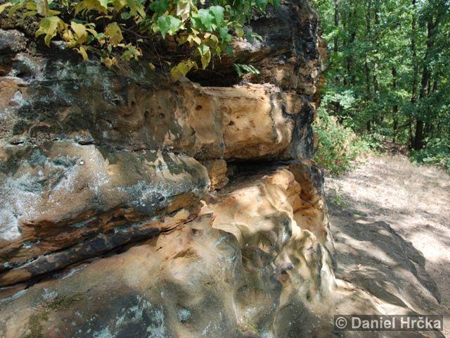 OKROUHLÍK – přírodní památka